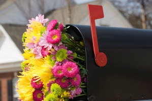 Fresh spring flower bouquet in the mailbox